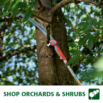 Orchards & Shrubs