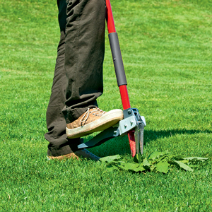 5 Weeding Tools for Every Garden