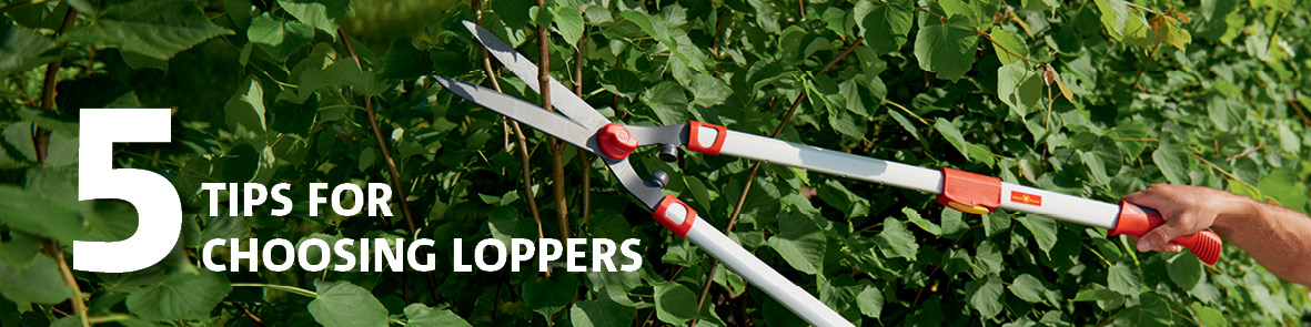 5 Tips for Choosing the Right Loppers
