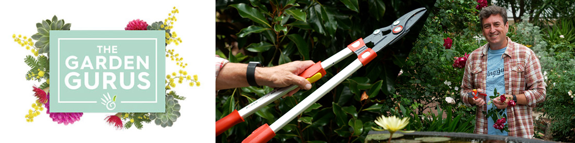 Secateurs and Loppers