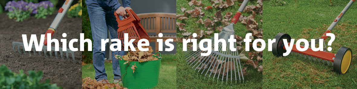 Which rake is right for you?