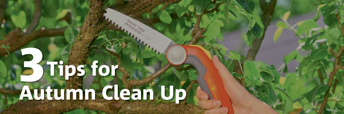 3 Tips for Autumn Clean Up